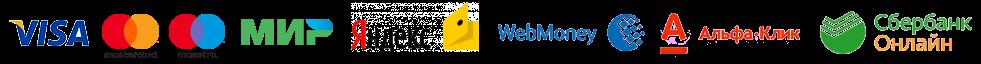 Принимаем к оплате Visa, MasterCard, Мир, Maestro, Альфа-Клик, Сбербанк-Онлайн, Яндекс.Деньги, Webmoney